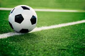 Memilih Taruhan Bola Paling Menguntungkan